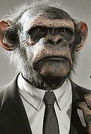 War Monkeys Poster