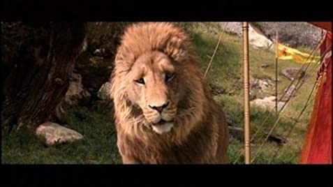 lion movie subtitles url