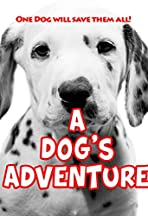 Operation Dalmatian: Paws & Claws Rescuers
