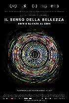 CERN & The Sense of Beauty