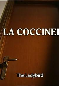 Primary photo for La coccinella