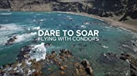 Dare to Soar - Flying with the Condors