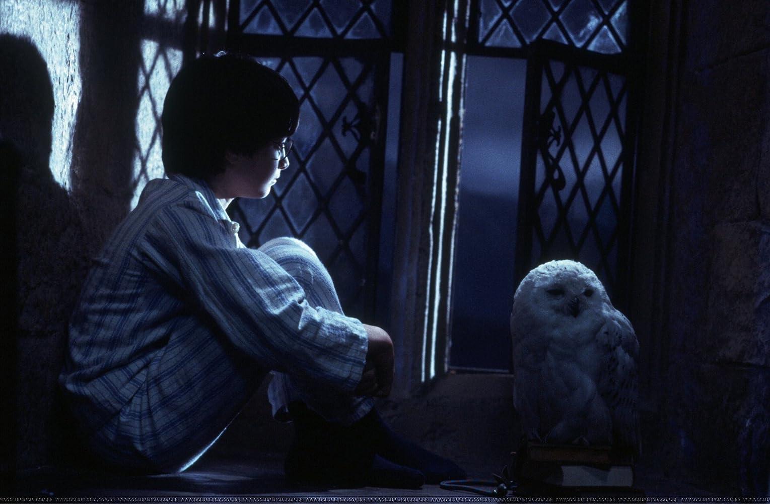 In Harry Potter and the Sorcerer's Stone draait het meer om het leven op Zweinstein dan om het vechten tegen het kwaad