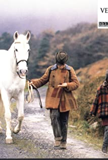 Rúaidhrí Conroy Picture