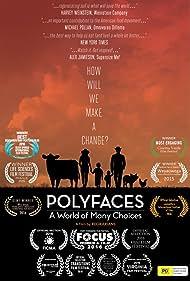 Polyfaces (2015)
