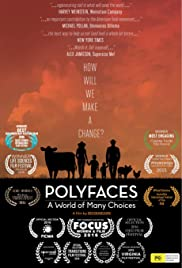 Polyfaces Poster