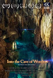 Into the Cave of Wonders Poster