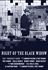 Night of the Black Widow Poster