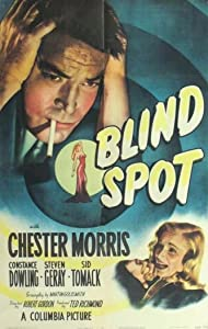 Movie brrip free download Blind Spot USA [320p]