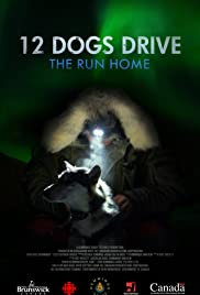 12 Dogs Drive - The Run Home