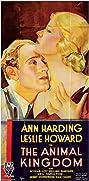 The Animal Kingdom (1932) Poster