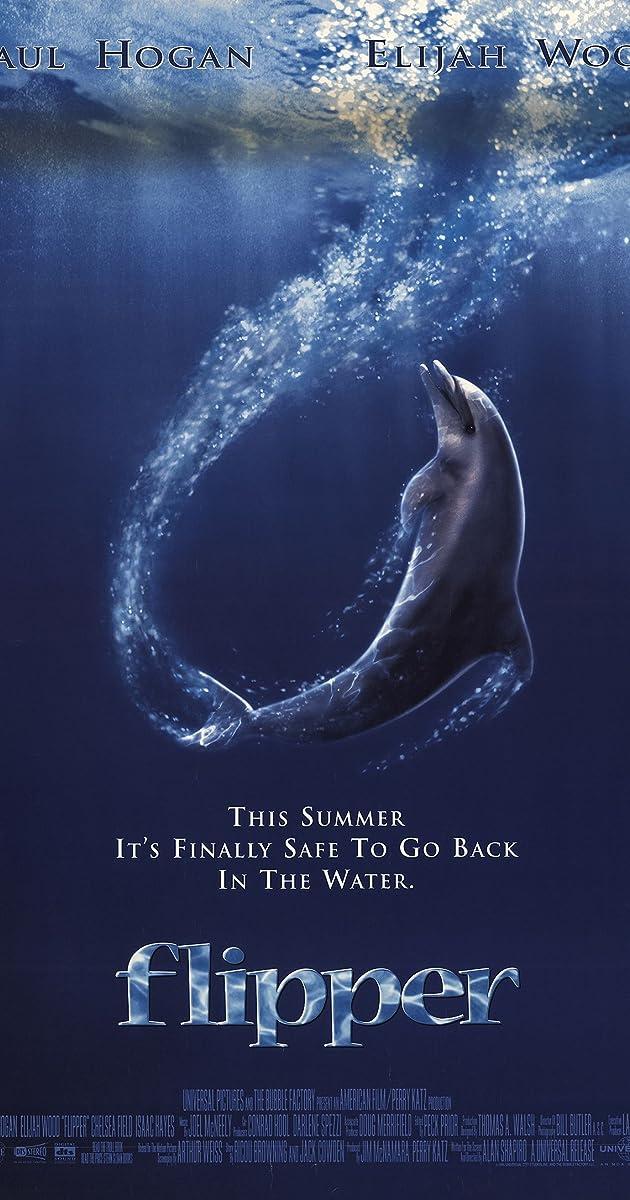 Subtitle of Flipper
