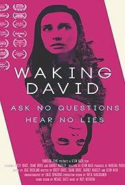 Waking David Poster