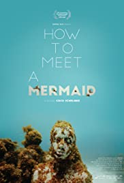 How to Meet a Mermaid Poster