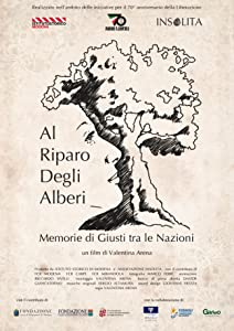 Movie trailer Al riparo degli alberi by none [720x1280]