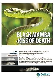 Black Mamba Kiss of Death Poster