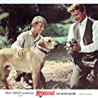 Steve Forrest and Bill Mumy in Rascal (1969)