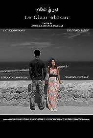 Le Clair obscur (2016)