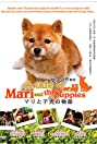 A Tale of Mari and Three Puppies (2007) Poster