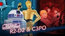 R2-D2 and C-3PO - Trash Compactor Rescue