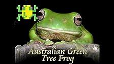 Frogger, Australian for Games