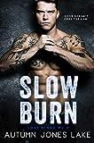 Free eBook - Slow Burn