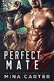 Free eBook - Perfect Mate
