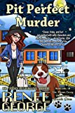 Free eBook - Pit Perfect Murder