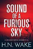 Free eBook - Sound of a Furious Sky