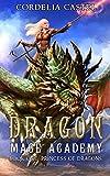 Free eBook - Dragon Mage Academy