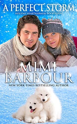 Bargain eBook - A Perfect Storm