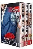 Free eBook - A Secret Billionaire Romance Collection