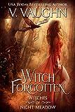 Free eBook - Witch Forgotten