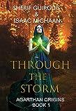 Bargain eBook - Through The Storm