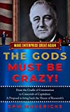 Bargain eBook - The Gods Must Be Crazy