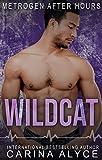 Free eBook - Wildcat  A Strong Woman Medical Romance