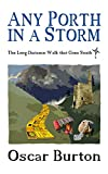 Bargain eBook - Any Porth in a Storm
