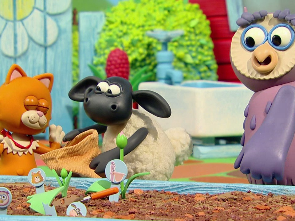 Watch Timmy Time Season 2 Episode 5 Timmy Learns To Fly