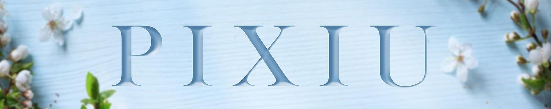 PIXIU header