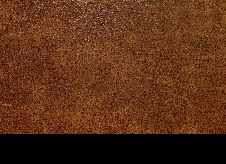 amazon com leather honey leather conditioner