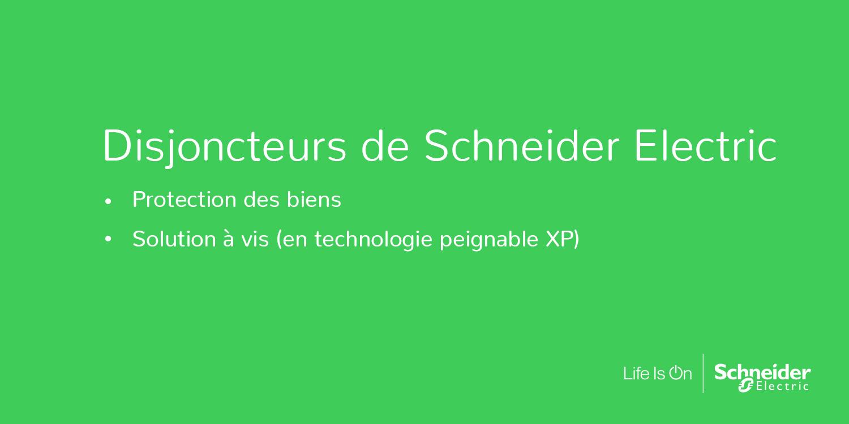 Blanc Schneider Electric SC5R9PLCR Parafoudre