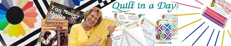 Quilt In A Day header