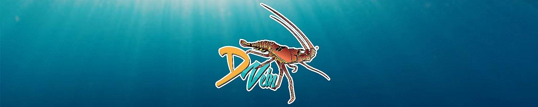 D Vein image