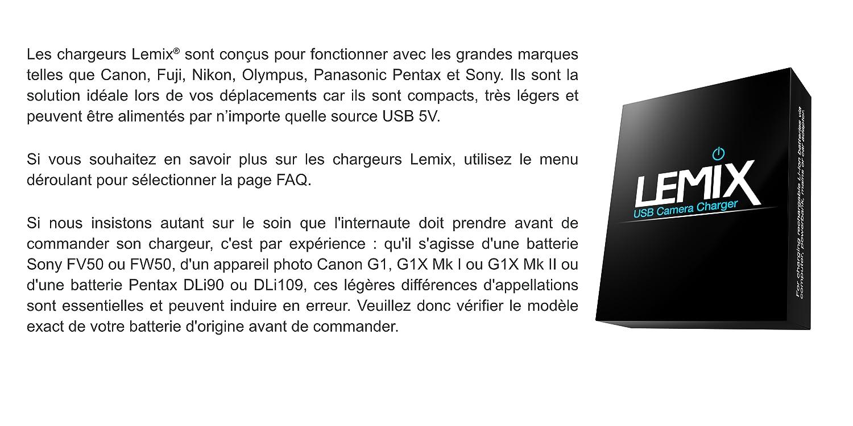 Lemix (BLF19) Chargeur USB Ultra Mince pour Batteries
