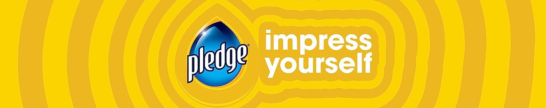 Pledge header