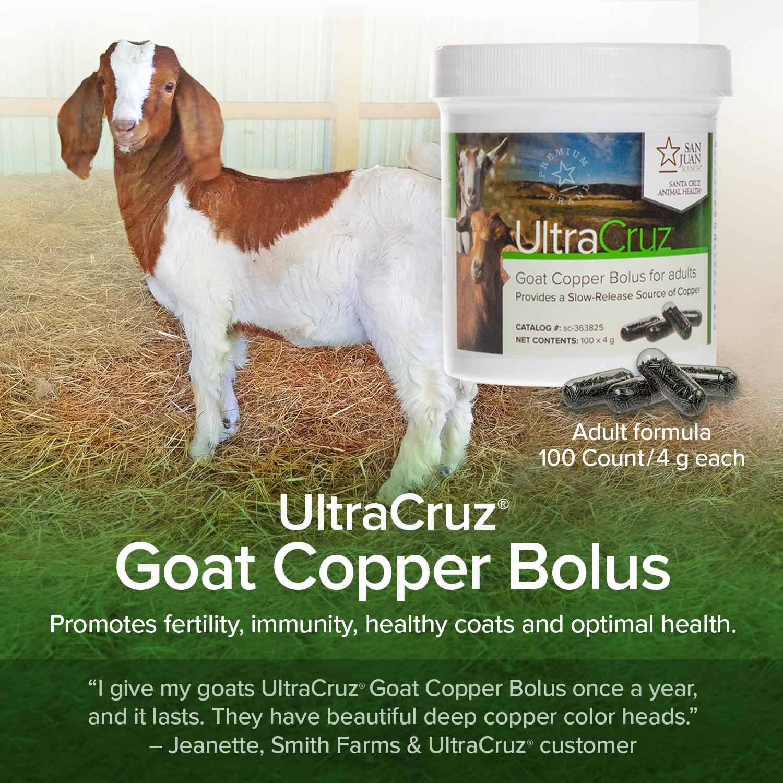 UltraCruz Cattle Copper Bolus for adults