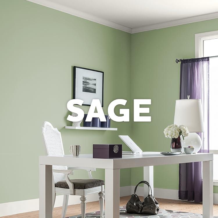 Amazon.com: Glidden: Sage Green Paint Colors