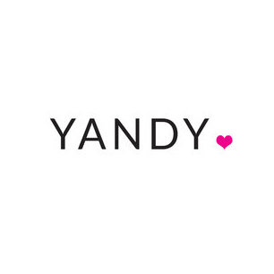 Image result for yandy logo