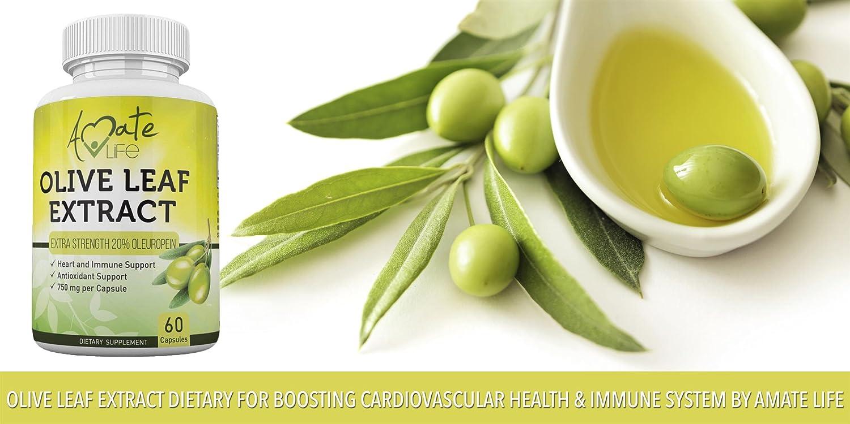 Amazon com: Amate Life: Olive Leaf Extract