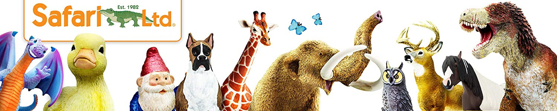 Safari image